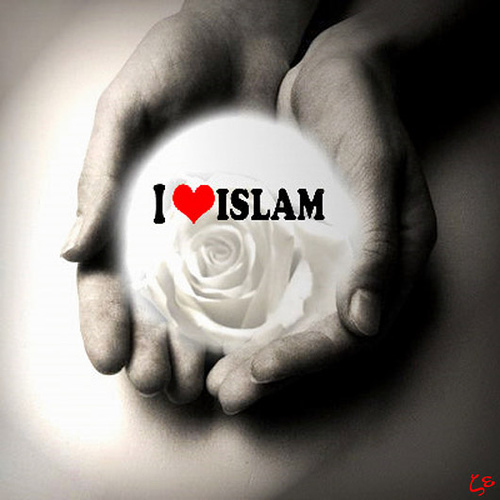 http://gentole.files.wordpress.com/2009/08/love-islam.jpg