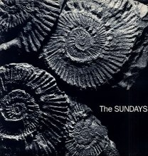 The+Sundays+-+Reading+Writing+&+Arithmetic+-+LP+PICTURE+DISC-10865